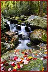 Smoky mountains water fall jigsaw puzzle