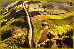 Mobile - PC aerial_cultivated_land jigsaw puzzle