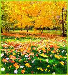 Mobile - PC Group of  beautiful colorful autumn park jigsaw puzzle