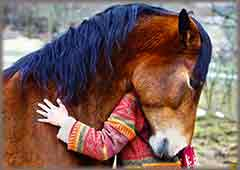 Mobile - PC girl hugging horse jigsaw puzzle