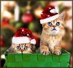 Mobile - PC Group of  two santa persian kitten jigsaw puzzle