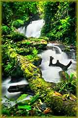 waterfall thai park jigsaw puzzle