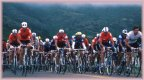 Bicycle Racing  jigsaw puzzle